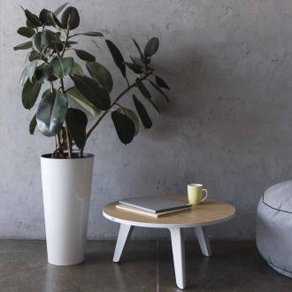 Кавовий столик Lagertha 2